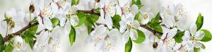 Фартук для кухни Цветущий сад